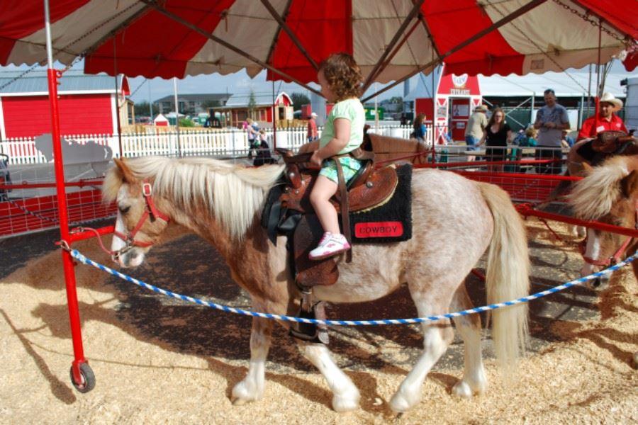 The Fair Evergreen State Fairgrounds Wa Official Website